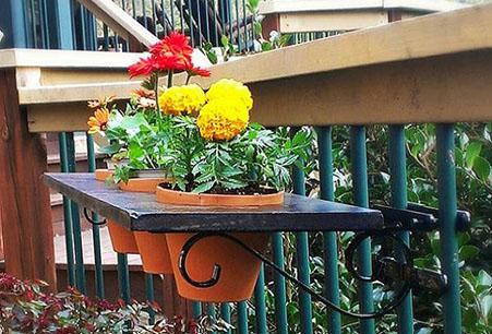 fho5-flowerpots